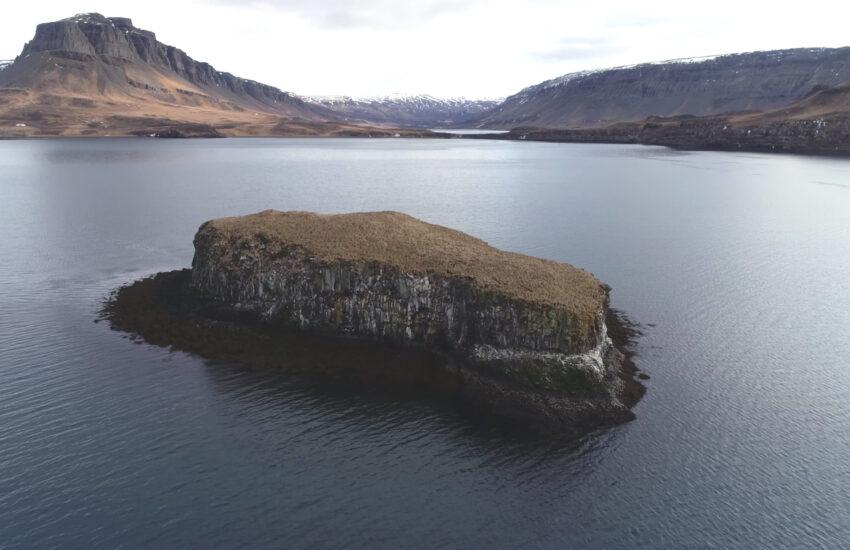 Harðar saga