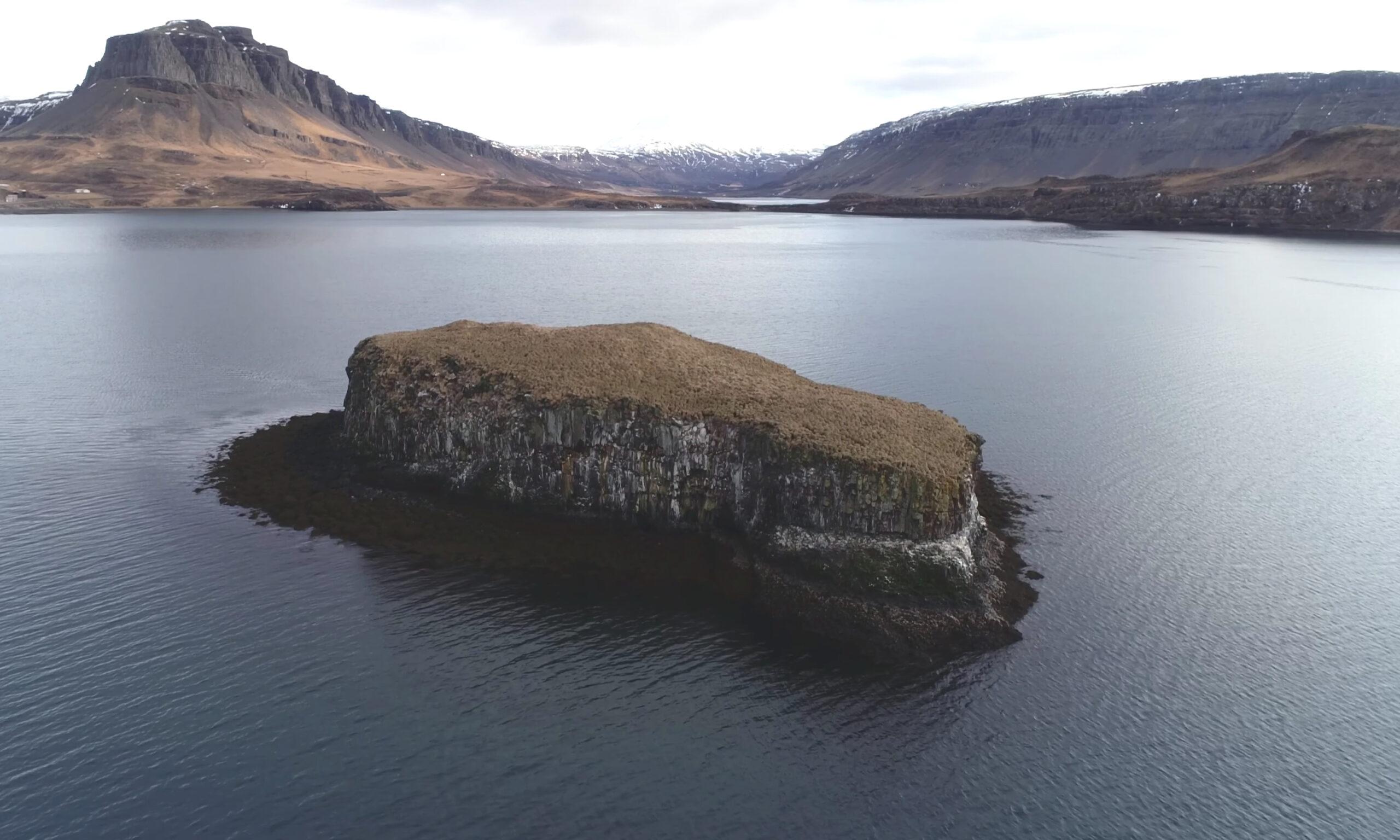 Saga Stories with the Reykjavík Grapevine: Harðar saga